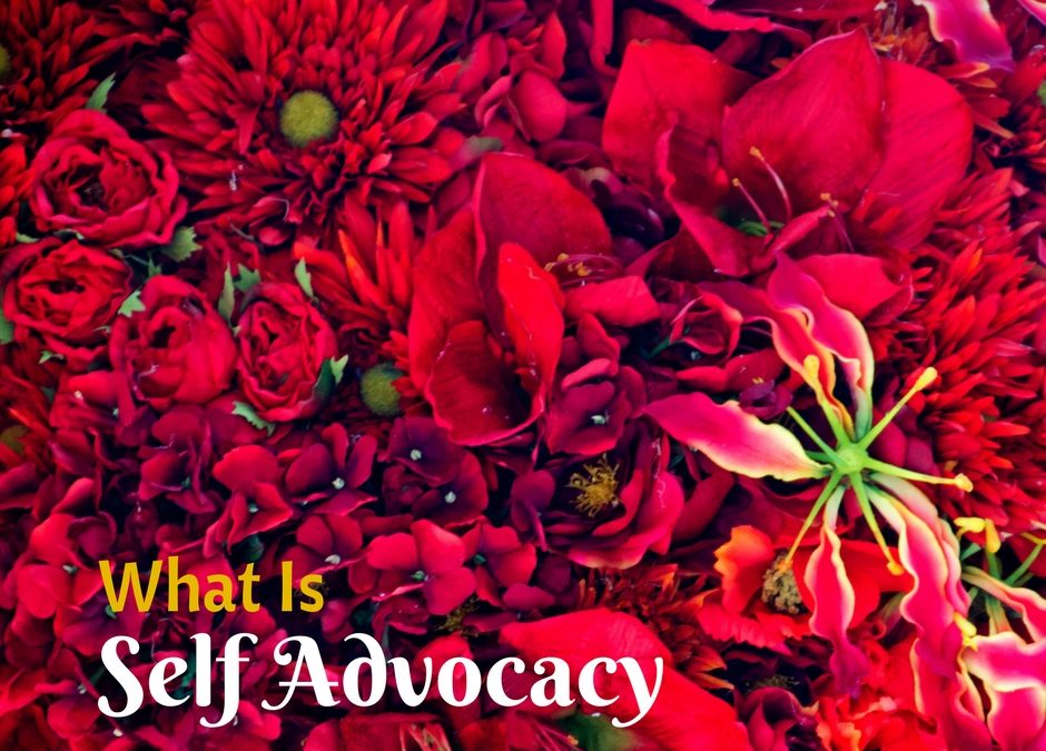 What is Self Advocacy - Legally Shalini